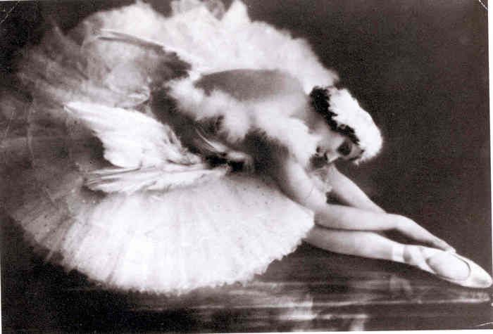 """anna pavlova and the dying swan Anna pavlova was born in st petersburg, russia, on january 31st, 1881 her first exposure to ballet came at the age of eight when she  fokine created pavlova's """"dying swan"""" solo, which became her most identifiable and enduring role throughout her career."""