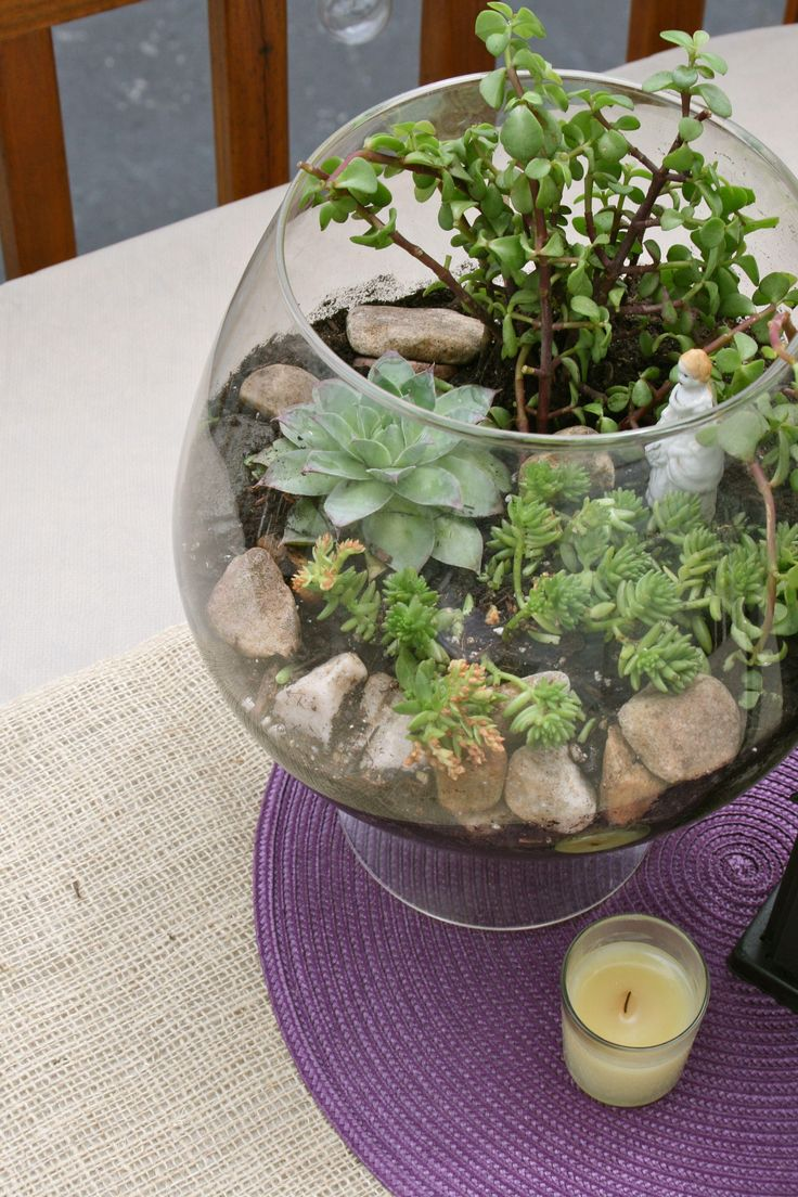 DIY Fish Bowl Terrarium DIY Terrarium Garden love the Buddha in there