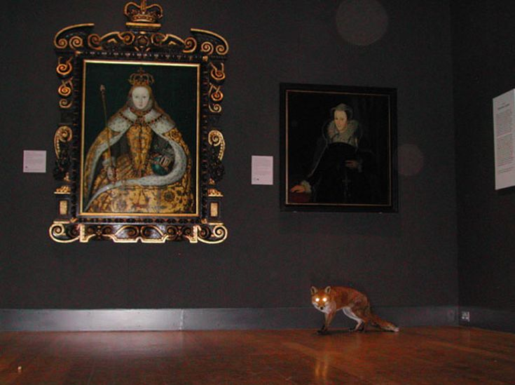 Surveillance cameras observe a fox exploring the Tudor and Georgian rooms of the National Portrait Gallery at night.