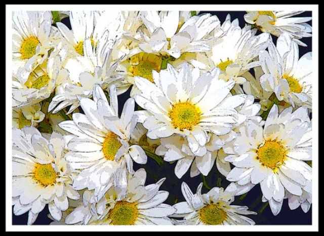 flowers burton ohio