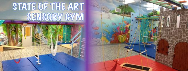 State of the art sensory gym processing disorder