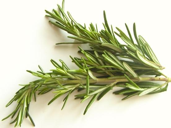 Health Benefits: Rosemary Benefits Health