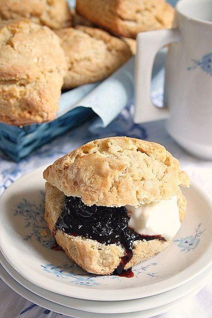 Scones, cream and black currant jam. oh breakfast. mmmm.