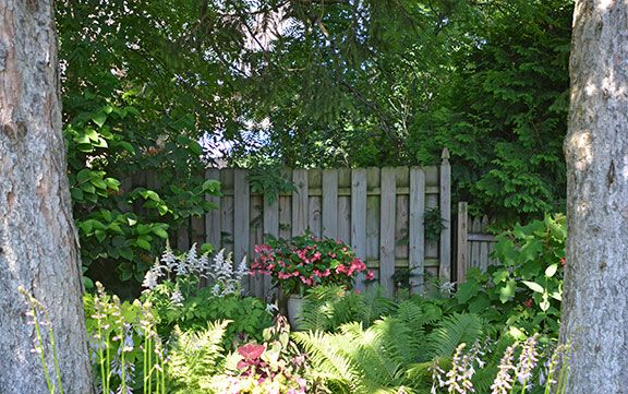 pretty :) | backyard landscaping | Pinterest