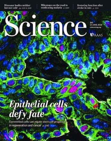 Science June 13 2014