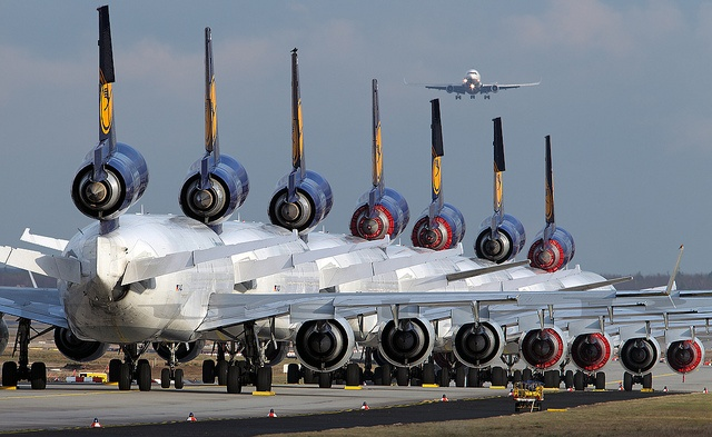 8 X MD-11's in one picture @ FRA D-ALCL, D-ALCA, D-ALCB, D-ALCD, D-ALCS, D-ALCF, D-ALCP and D-ALCI is at final. [explore] by nustyR AirTeamImages
