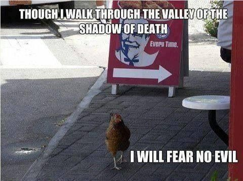 why did the chicken cross the road....to fear no evil