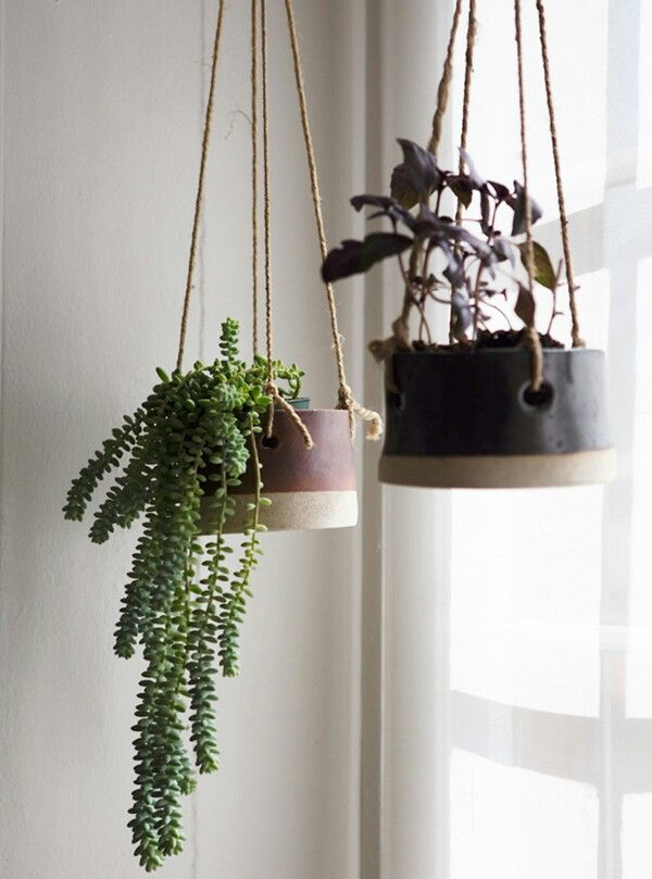 indoor hanging baskets  Ideas for the House  Pinterest