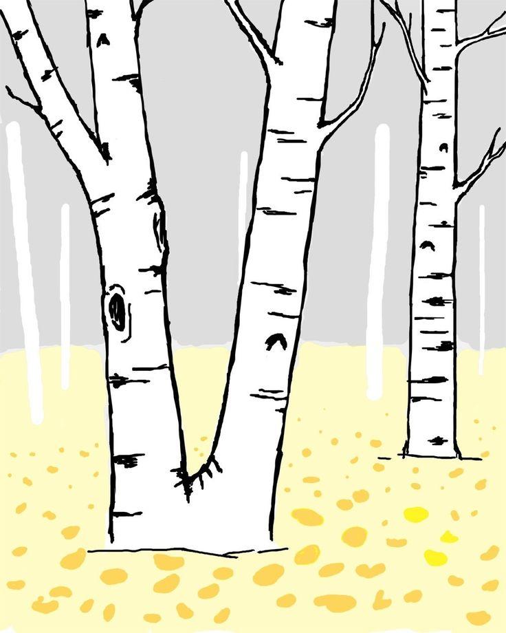 Birch Tree Clip Art Birch tree graphic
