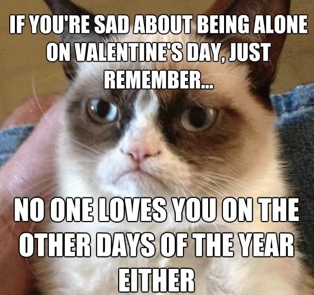valentine's day grumpy cat