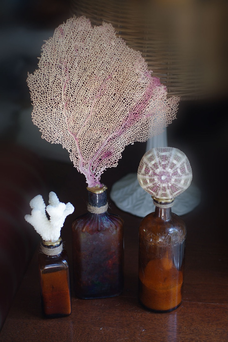 Amber Bottles with Sea Life - Sea Fan, Coral and Sea Urchin ~ I could make these!