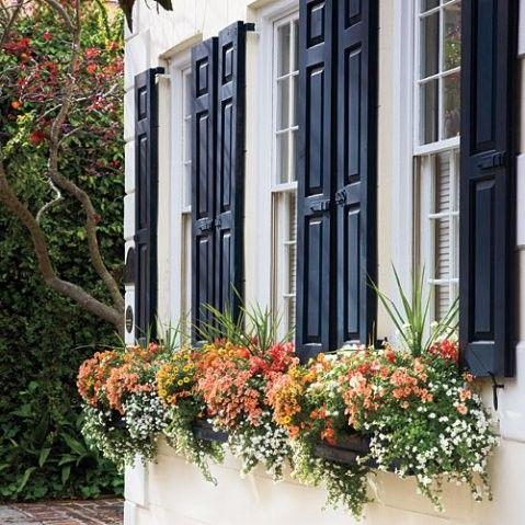 pretty window boxes