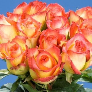 valentine gifts wholesale