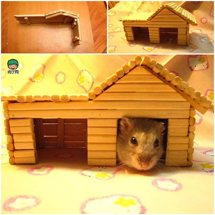 diy hamster house with chopsticks diy hamster stuff