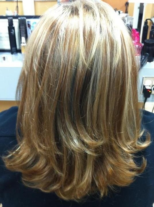 Difference Between Lowlights And Highlights | Dark Brown Hairs
