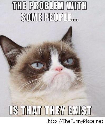 Grumpy cat on people saying funny pinterest