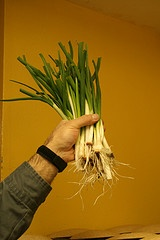 Farmer paul gregory s green onions flowers farmers producers pin
