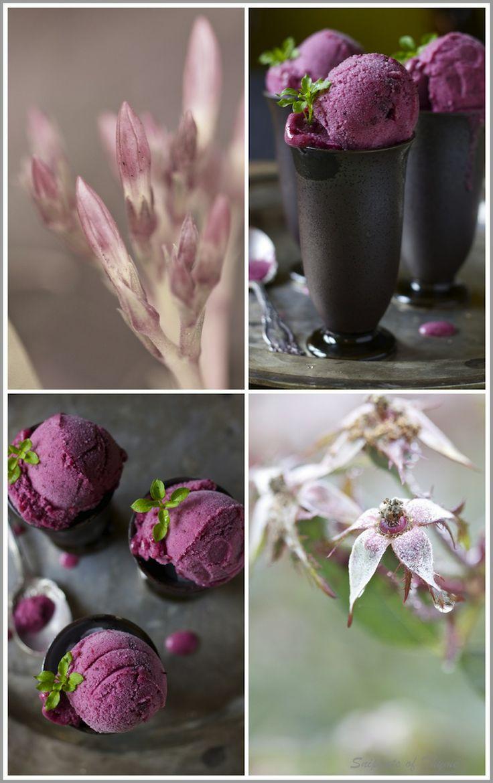 Winter Mixed Berry and Citrus Sorbet | Ice Cream/Sorbet/Granita | Pin ...