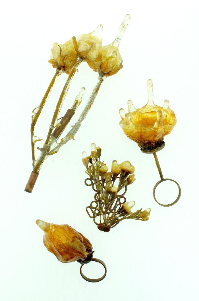 Azahara santoro - Antrohigronobarofobia- Miedo irracional a las flores mojadas que burlan la gravedad. Piezas unicas http://labasilicagaleria.files.wordpress.com/2012/11/1112.jpg?w=700=