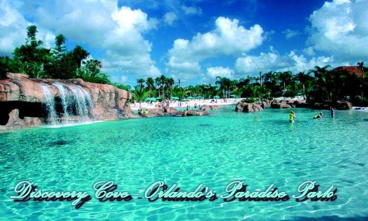 Discovery Cove - Orlando's Paradise Park