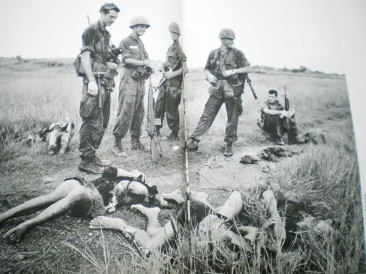 """essay nam viet war There were many events that lead up the vietnam war, it started in 1945 with the hostilities between the french and vietminh """"geopolitical strategy, economics, domestic us politics, and cultural arrogance shaped the growing american involvement in vietnam"""" (anderson 1) as a matter of fact, the."""