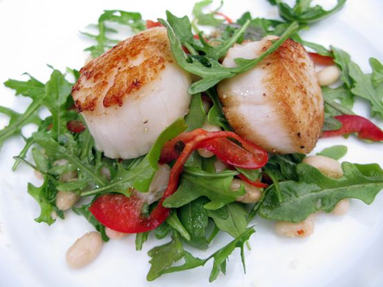 ... arugula salad 10 best scallops scallops with tropical salsa seared