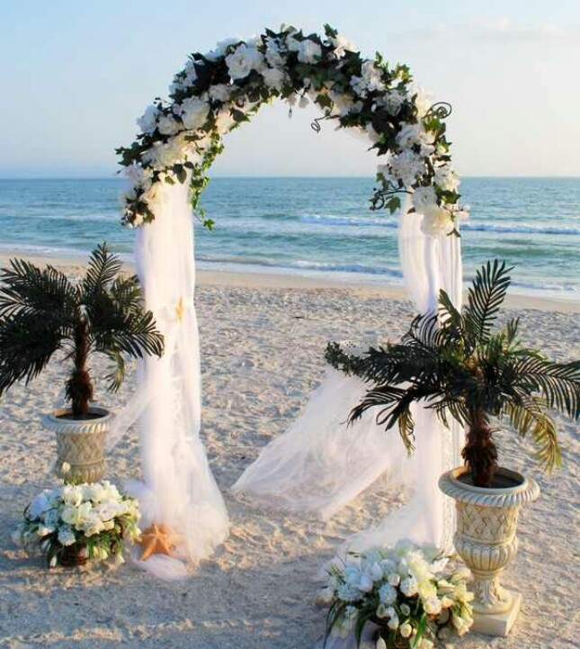 Wedding Arch Decorated With Mesh: Wedding Arch With Roses And Sheer Mesh