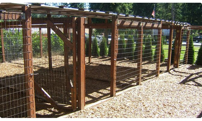Dog run idea, cedar playground chips for the ground coverage helps