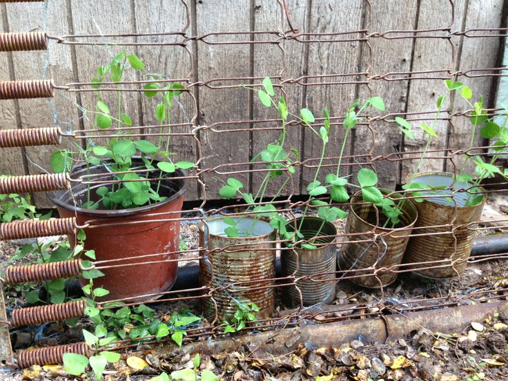 Junk Garden Garden Pinterest