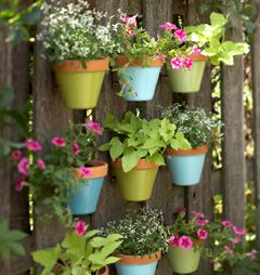 For the back patio. Either fresh flowers or an herb garden. Can't decide, but I have no green thumb, so maybe fake plants for now.