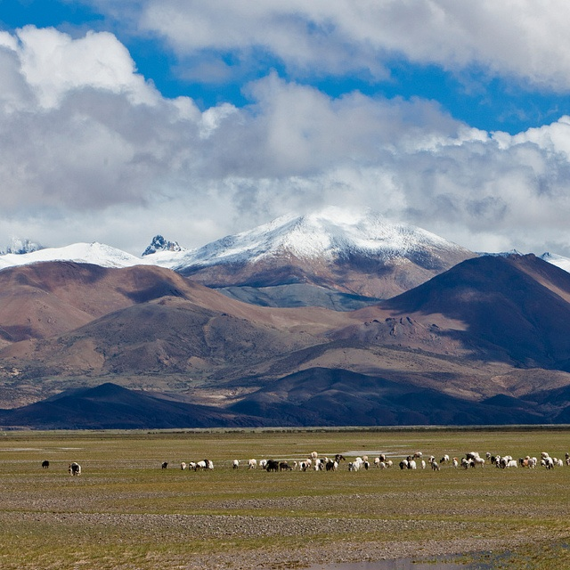 Tibetan Plateau By Pennstatelive Earth And Sky Pinterest