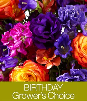 proflowers birthday arrangements