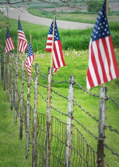 AMERICAN FLAGS ON FENCE IN IOWA