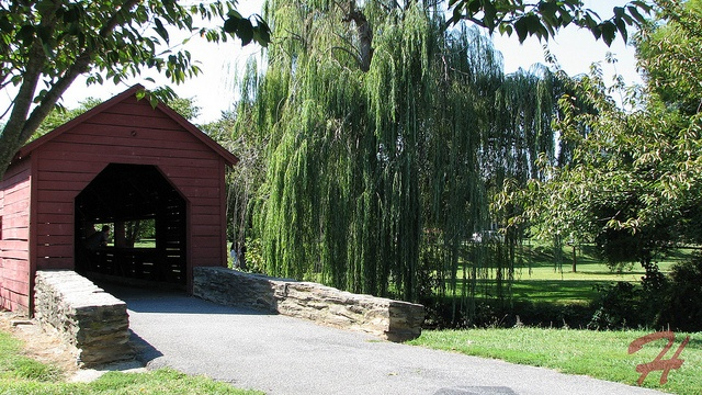 We had our wedding pics taken here at baker park in frederick md