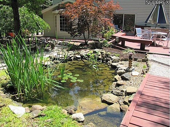 Bridge over Koi Pond | Backyard | Pinterest