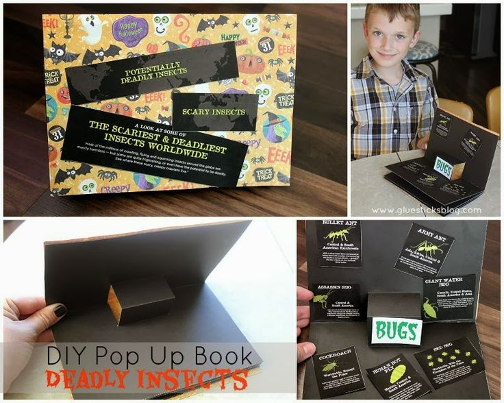DIY Pop Up Book