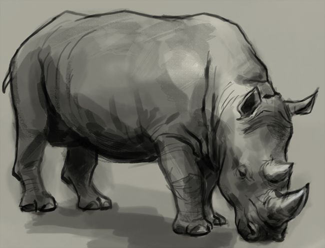 how to draw a dashed line on rhino