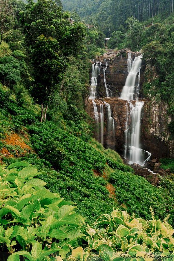 Beautiful Waterfall In Sri Lanka Falling Water Pinterest