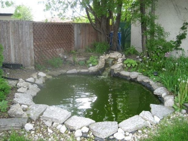 Backyard ponds do it yourself for the home pinterest for Diy backyard pond