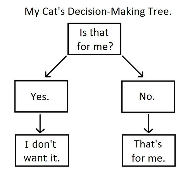 Cat DecisionTree
