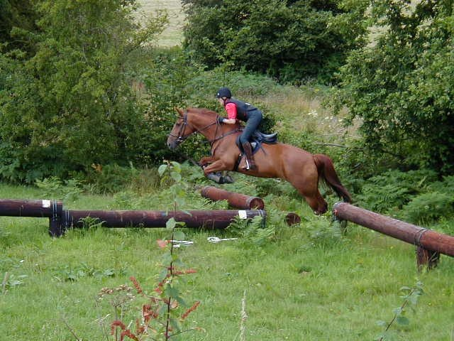 Horses jumping cross country - photo#2