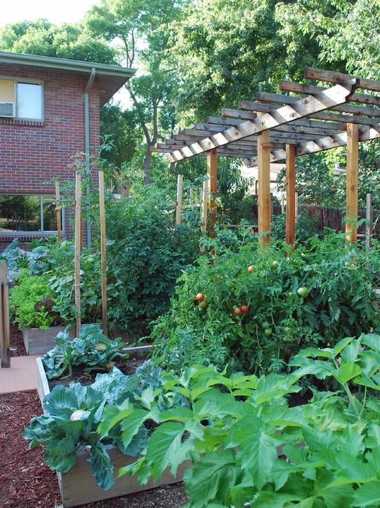Raised bed vegetable gardens design garden pinterest for Vegetable garden bed design