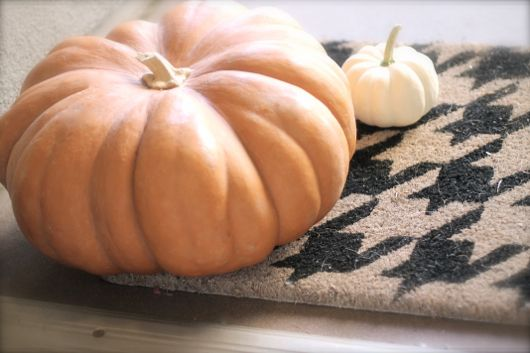 ::fairytale pumpkins::