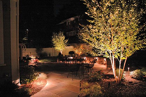 Landscape Lighting Ideas Trees : Pin by lisa malleus on landscape yard