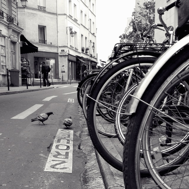 Paris bike scene