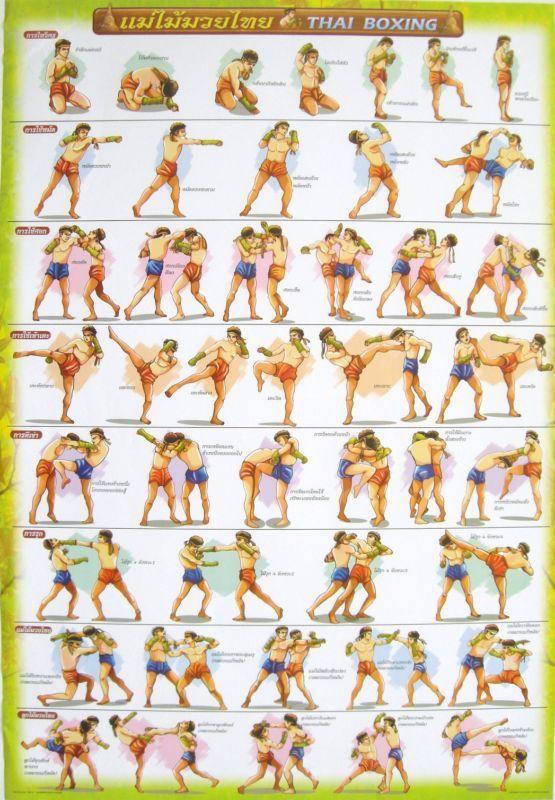 Тайский бокс тренировки в домашних условиях
