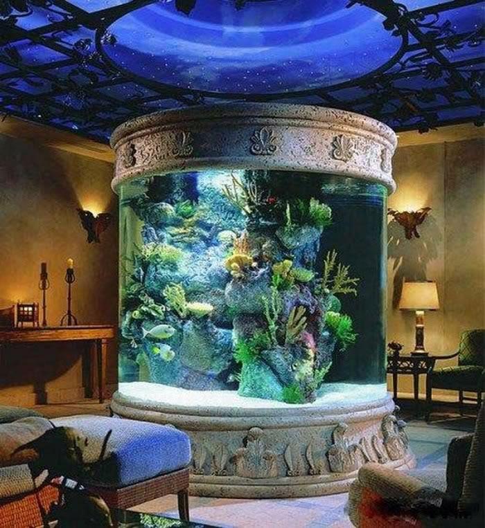 Living Room Aquarium Diving Pinterest