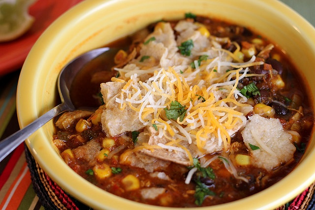Chicken Tortilla Soup by Back to the Cutting Board, via Flickr