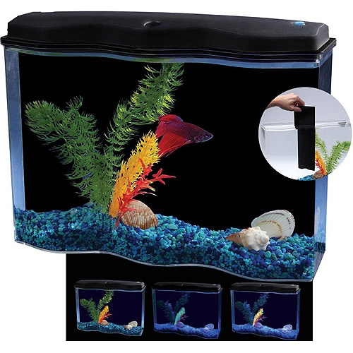 Aquarius betta wave 2 5 gallon aquarium kit with led for Betta fish tanks walmart