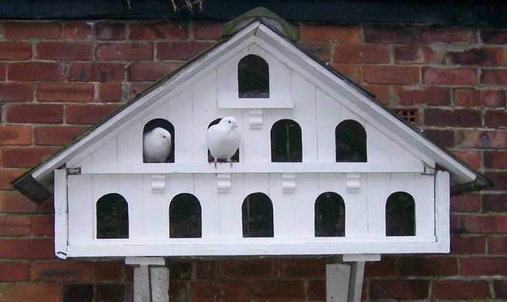 Free Dovecote Plans Diy Dovecote Plans Free Hd Wallpapers